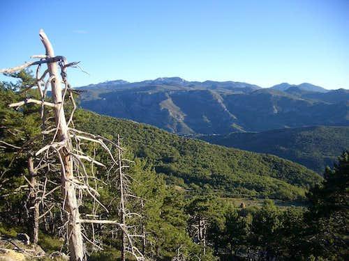 Bijela gora on Orjen massif