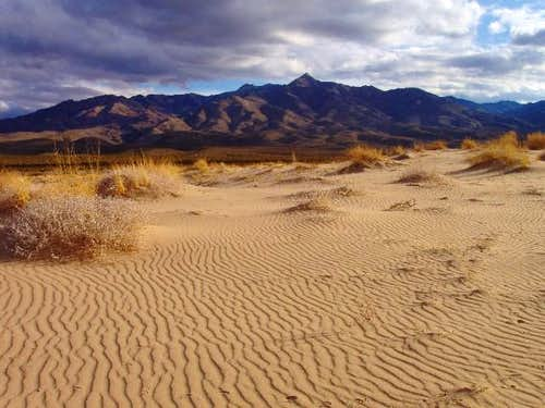 Kelso Dunes Landscape