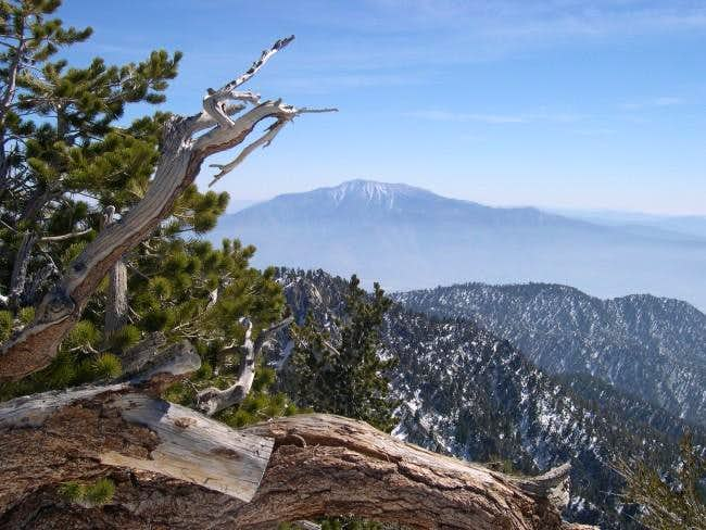 San Jacinto from the summit...
