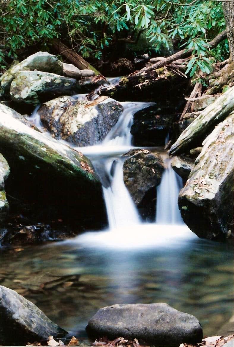 Greybeard Creek