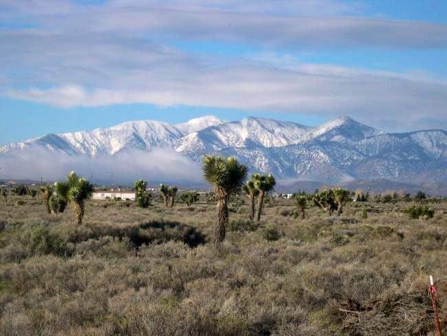 The San Gabriel Mountains as...