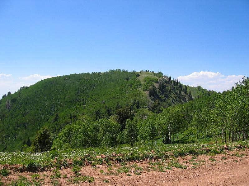 Millard County's Mine Camp Peak