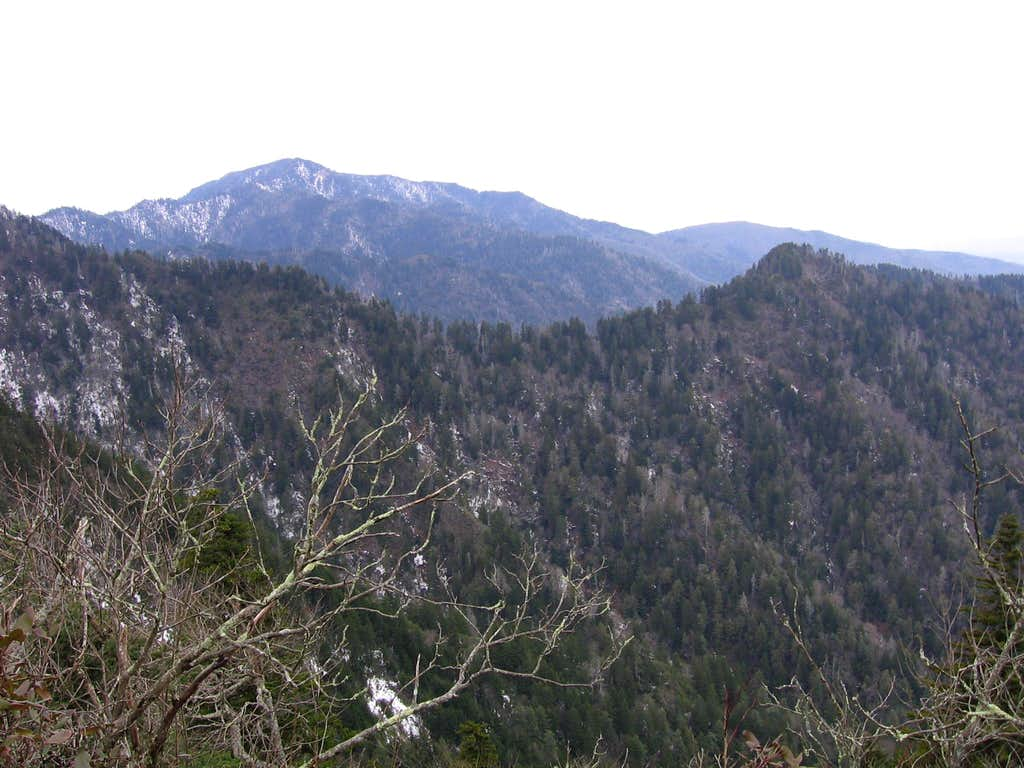 view of LeConte