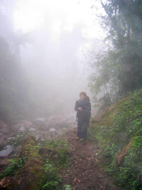 Dense Fog at Lower Levels