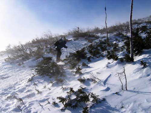 Lion Head Trail