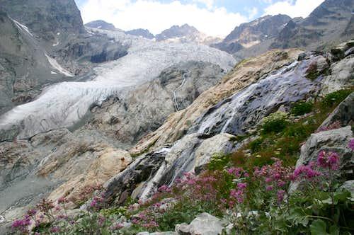 Glacier Blanc on the way to Les Agneaux
