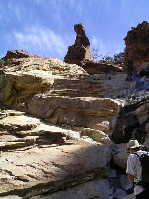 Scramble via Oak Creek Canyon