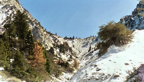 The Guardian of Galena Peak:  Panic on the Headwall