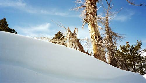 Snowbank on Climb of Galena Peak