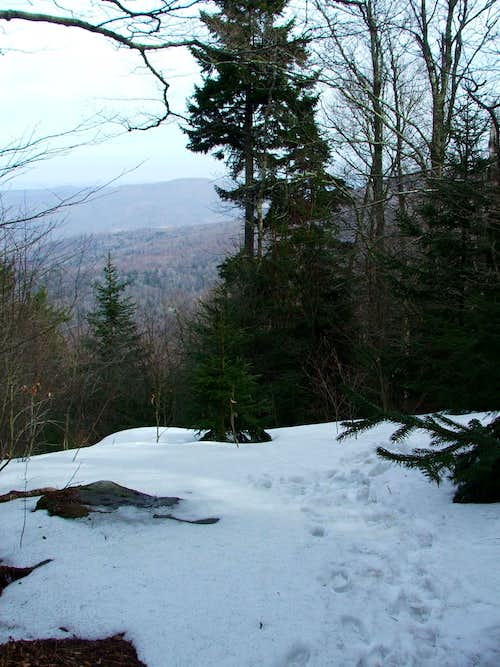 Red Spruce Knob Trail Overlook
