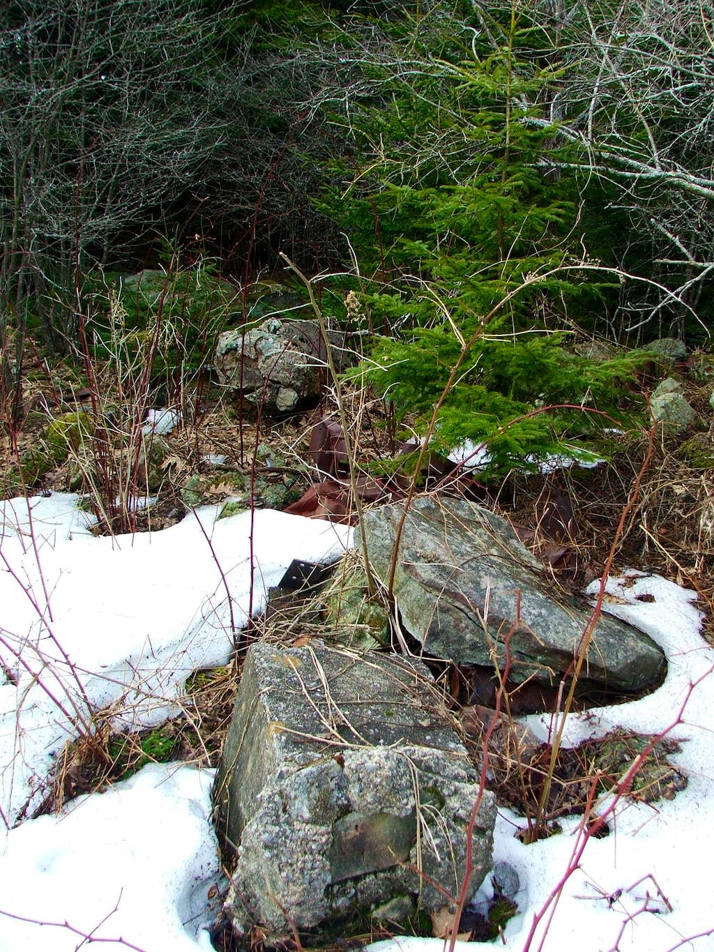 Remains of Red Spruce Knob Fire Tower
