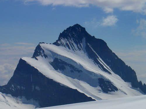 Finsteraarhorn 4273m
