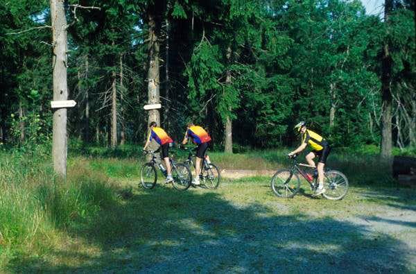 Mountainbiking in the Fichtelgebirge