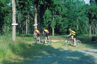 Mountainbiking in the Fichtelgebirge