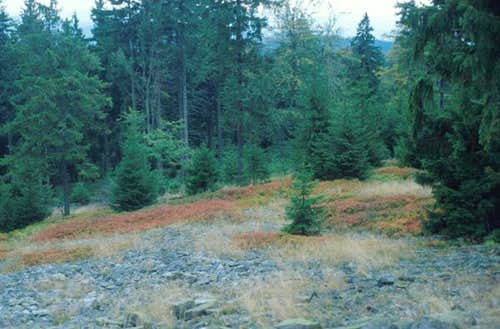 granite rock slope in fall