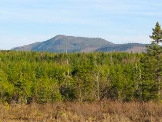 Moxie Mountain