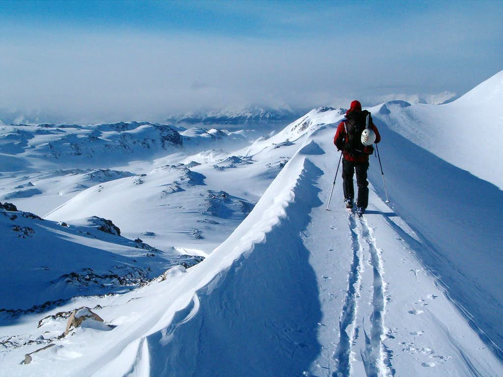 Pilot Peak and the Absarokas