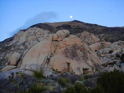 Ryan Mountain Moonrise