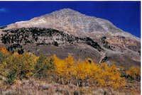Face of Cobb peak