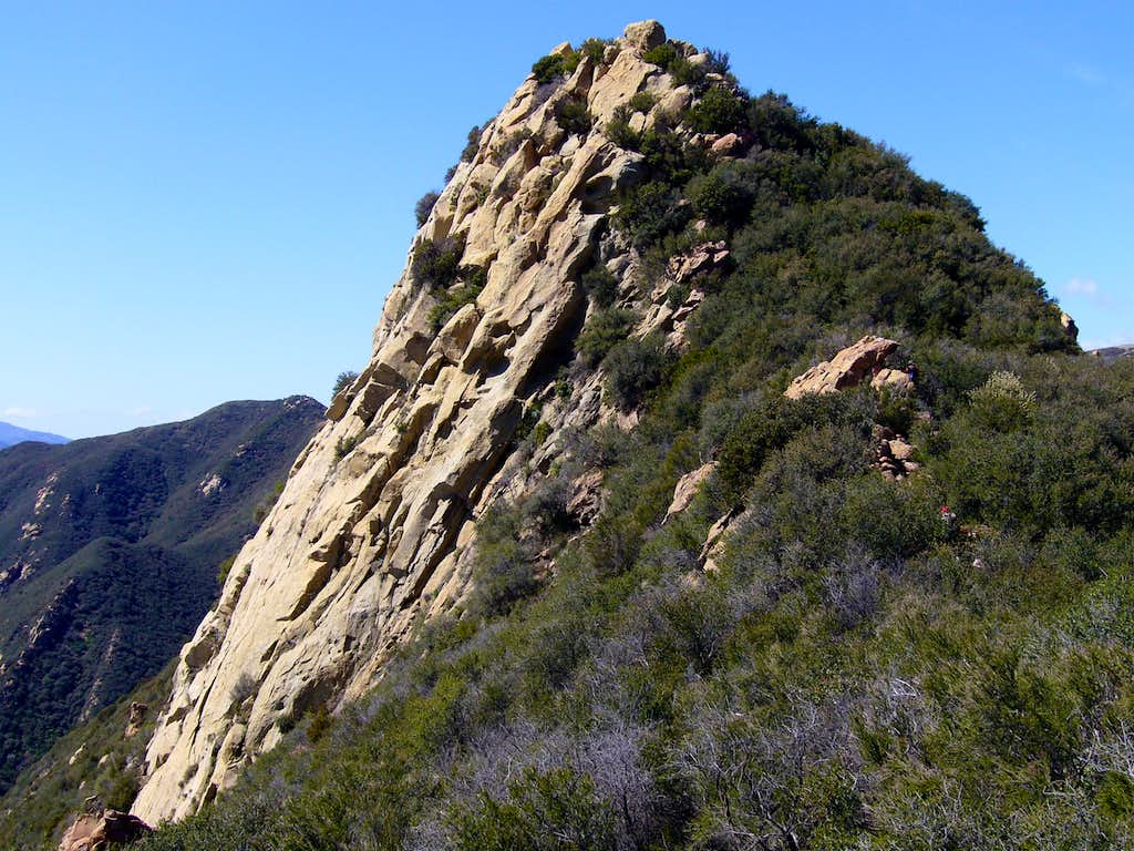 Close-Up of Cathedral Peak's Steep South Face