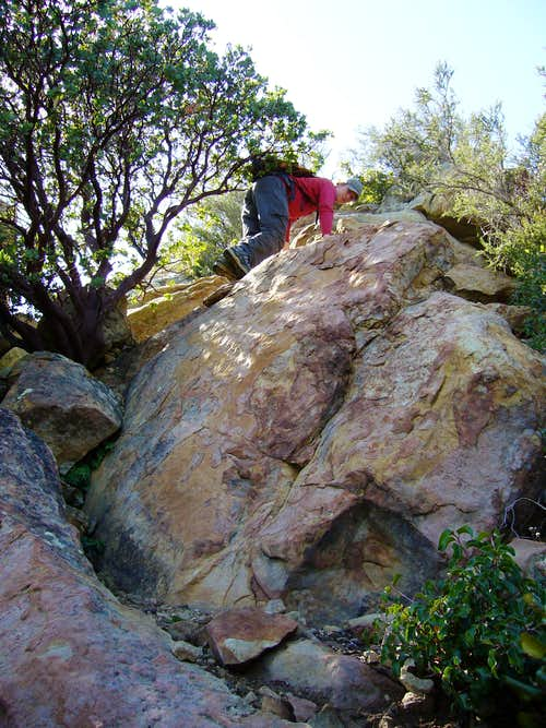 Class 3 scramble on Cathedral Peak