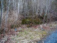 Fuller Mountain Trailhead