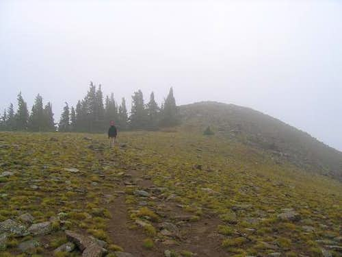 Baldy Peak in Fog and Rain