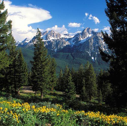 Elk Mountain Vista