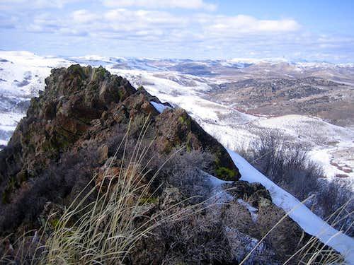 Rooster Comb Summit Ridge