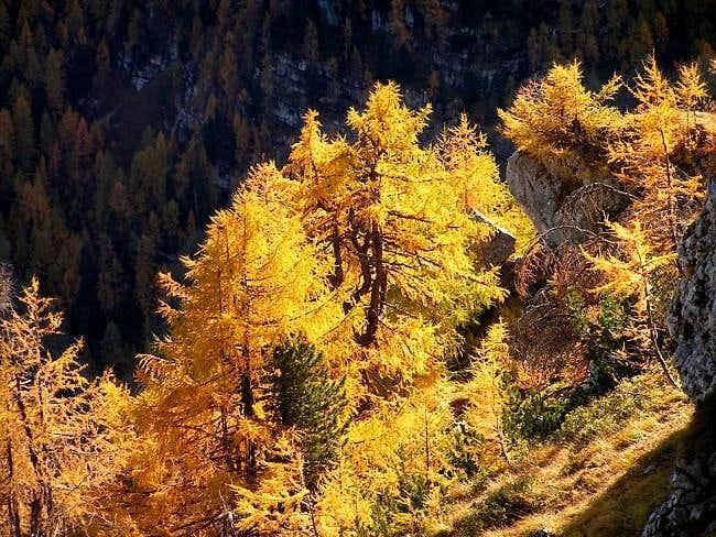 Autumn in Hagengebirge