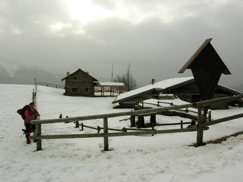 Snowing on Malga Pez