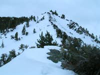 The  steep section