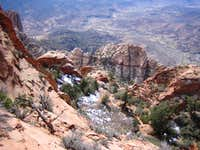 WatchmanSummit View look down to Springdale