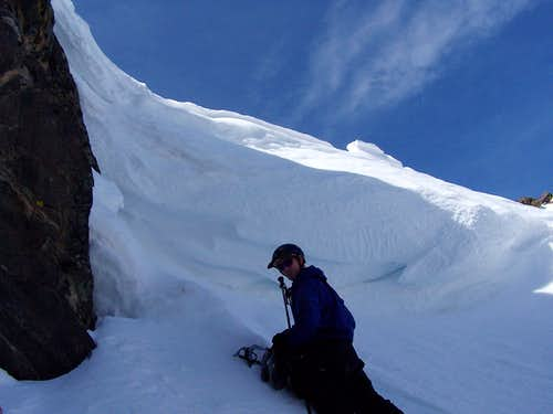 Dragons Tail- Big Cornice