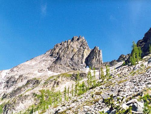 Seven Fingered Jack as seen...