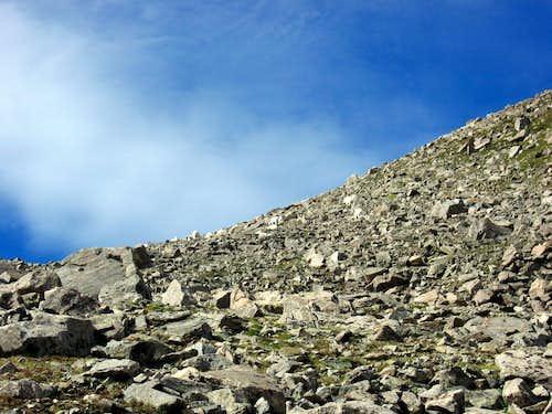 Mountain goats on Columbia