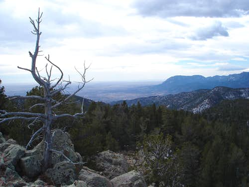Cheyenne Mountain from Ormes Peak