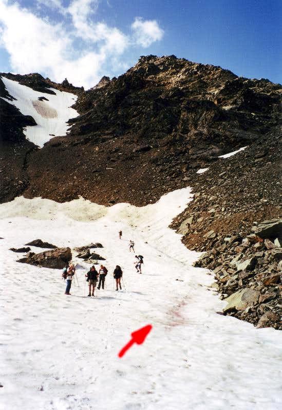 Cyanophyta over glacier