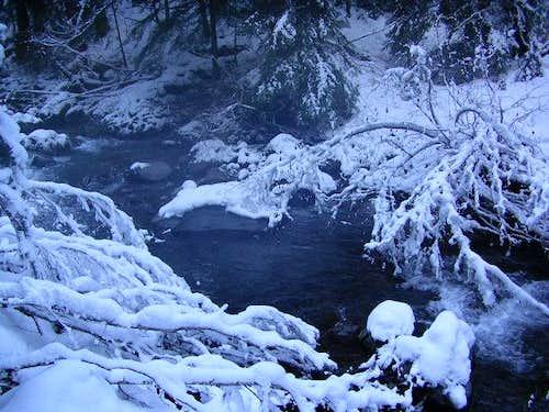 Walkin in a Winter Wonderland