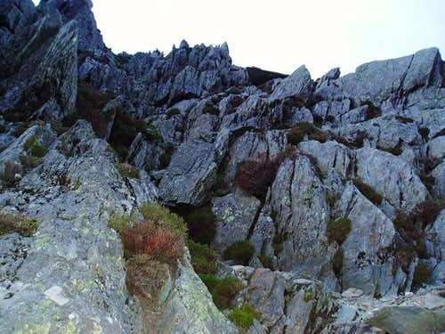 Looking up an off-route but enjoyable gulley