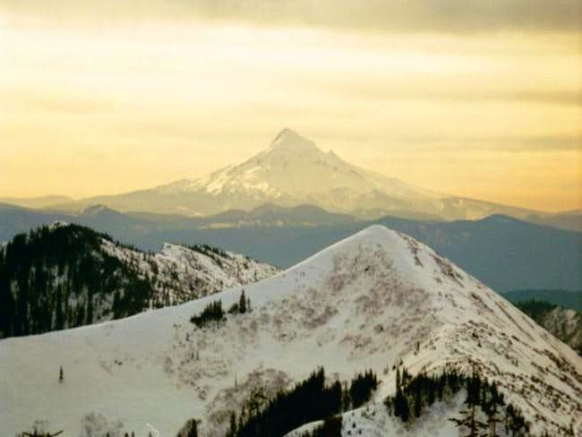 Mt. Hood in the early morning...
