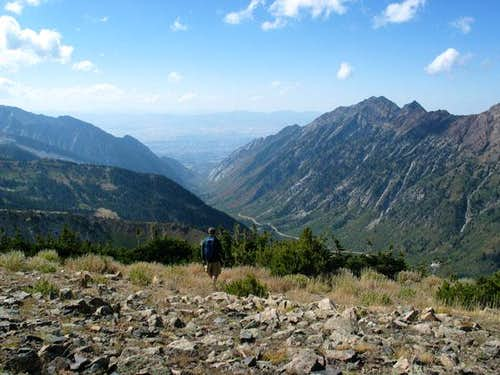 Little Cottonwood Canyon from Mount Baldy