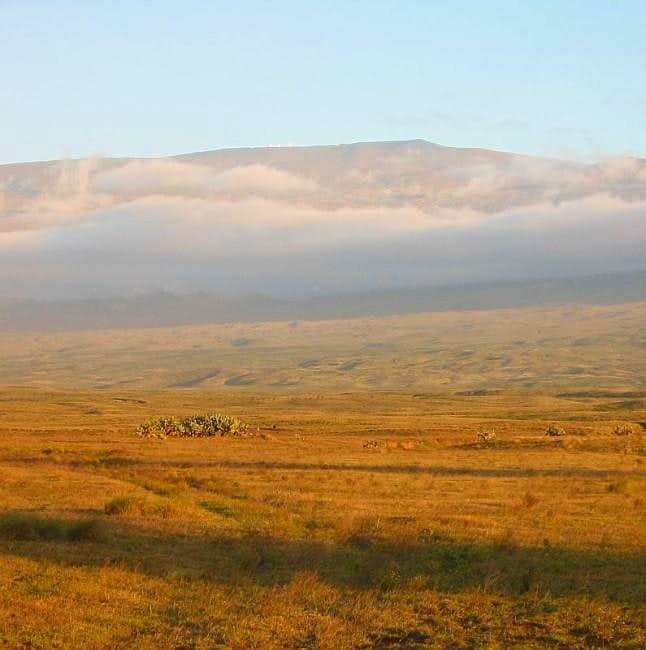 Mauna Kea from the northwest...