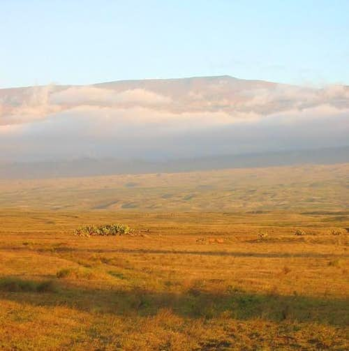 Mauna Kea from the northwest...