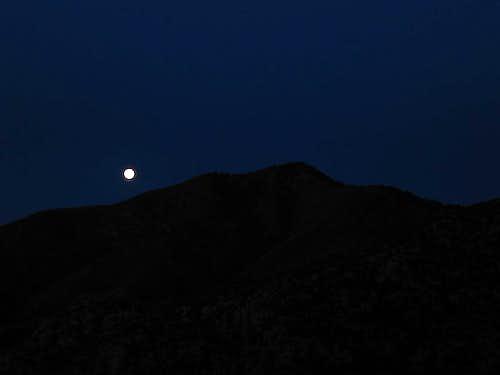 Full Moon Over Shumard