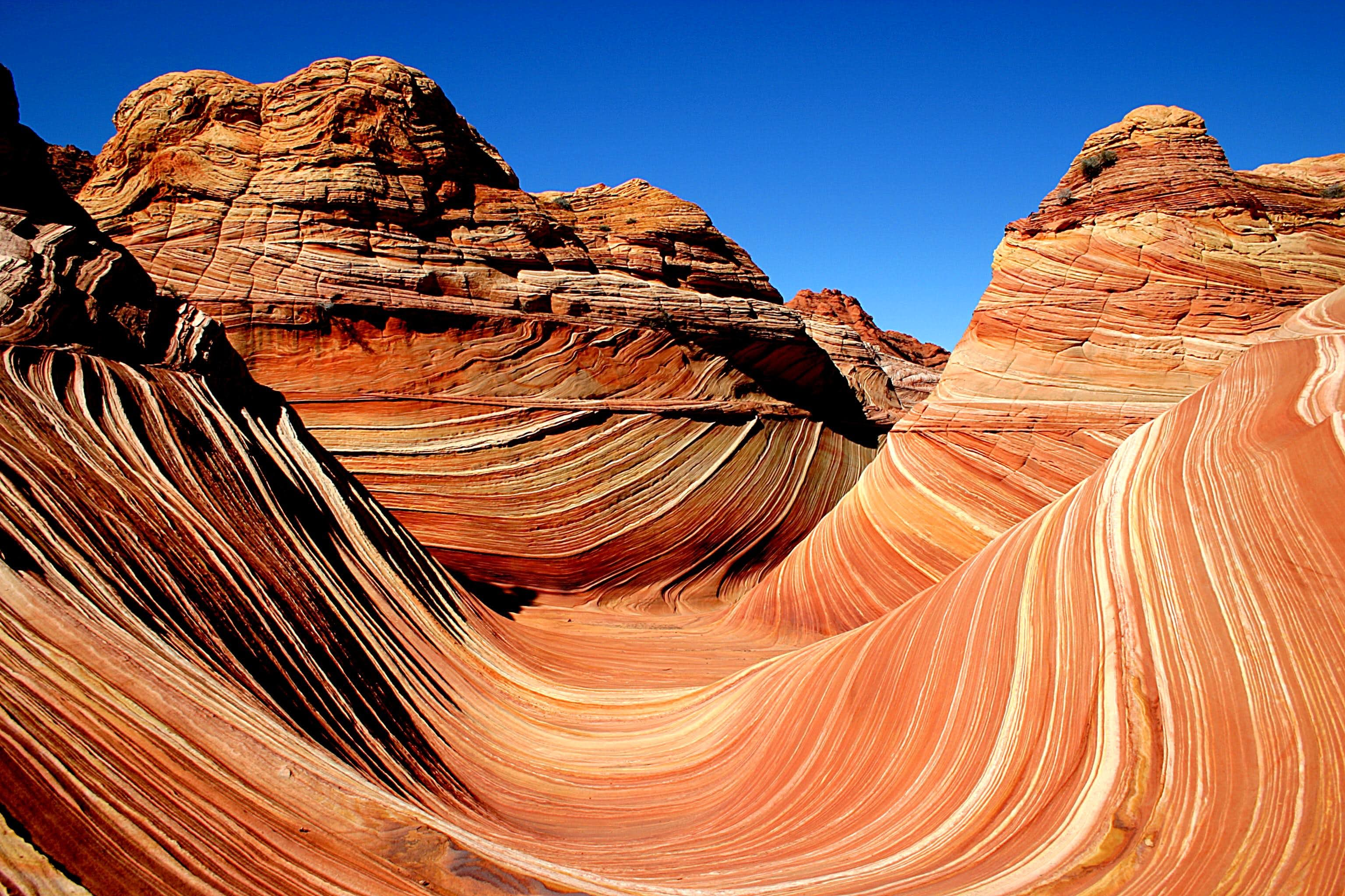 The Wave (Coyote Buttes)