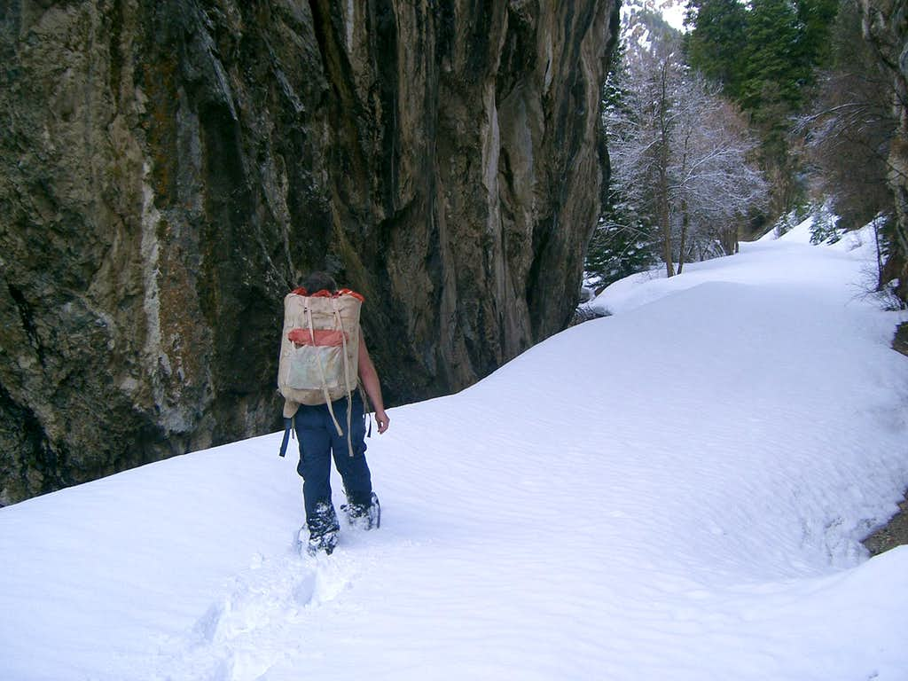 Snowshoeing through Upper Narrows