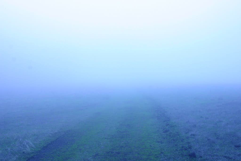 Still Very Foggy