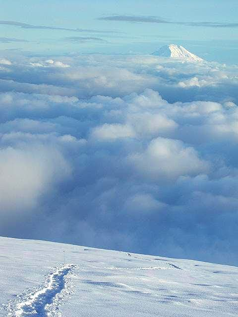 Mount Adams as seen from...