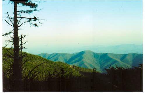 Old Mt. Mitchell Trail